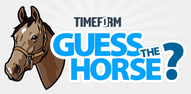 guess the horse.png
