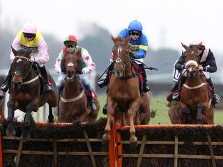 There is racing from Haydock on Wednesday