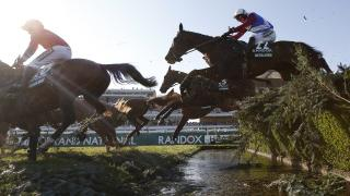 Today's best bet Oldgrangewood runs at Aintree