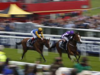Architecture delighted Hugo Palmer when finishing second to Minding in the Oaks