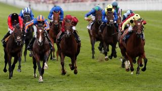 There is racing from Kempton and Southwell on Sunday