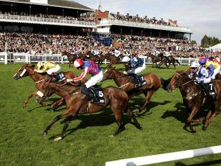 Will FTM's pick be first over the line at Ayr (above) this afternoon?