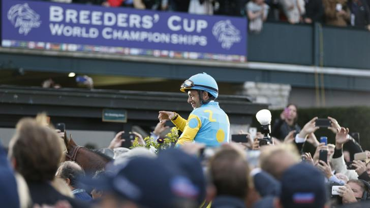 American Pharoah at the Breeders' Cup