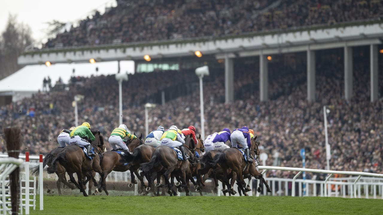 paddy power horse racing betting todays gold