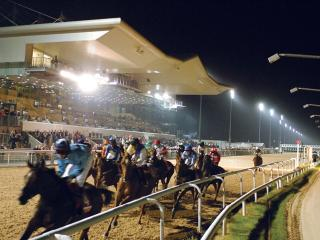 There is racing from Dundalk on Friday evening