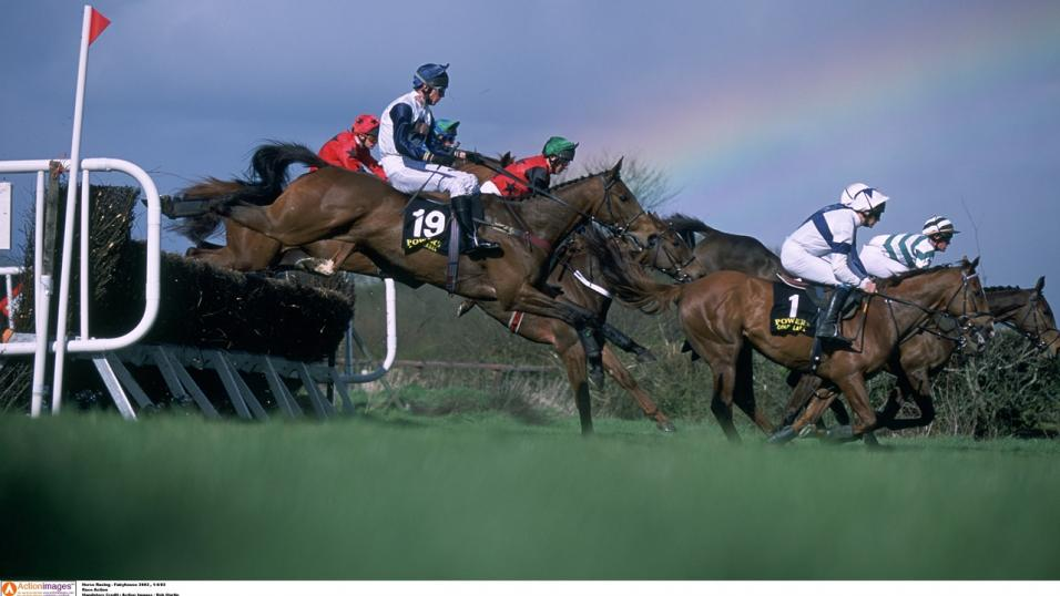 Fairyhouse Fence Action