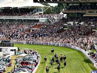 The Follow The Money team are at Glorious Goodwood for day one of the five-day meeting