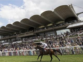 There is high-class Flat racing from Goodwood on Friday