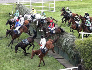 The Grand National is the biggest race of the year