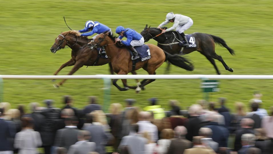 Hugo sends Arbalet to Newmarket (above) on Saturday and has runners all over the globe