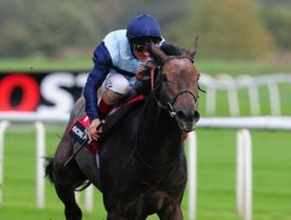 Kingston Hill will take all the beating in the St Leger says Ryan