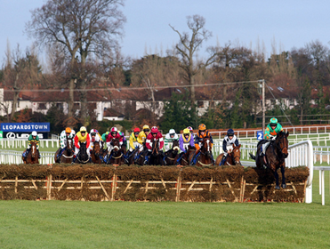 Point to point betting virtual horse racing betting games