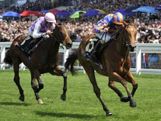 Newmarket hosts the Guineas festival next weekend