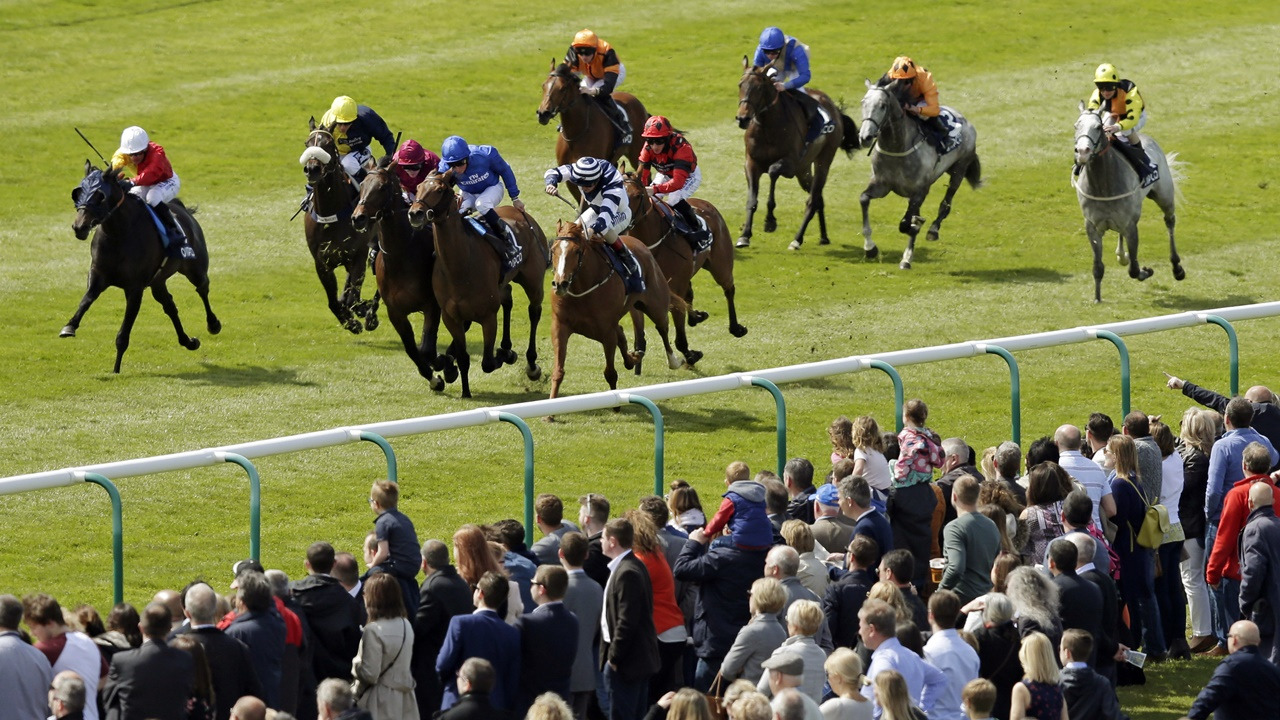 cesarewitch betting 2021