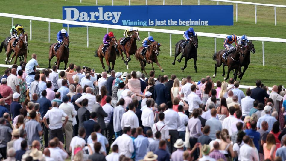 Timeform pick out three bets from South Africa on Tuesday