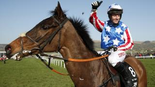 Special Tiara will be out to defend his Champion Chase crown at Cheltenham next month