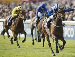 Can Taghrooda take the King George on Saturday?