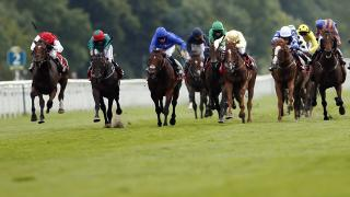 There is Flat racing from Leopardstown on Saturday