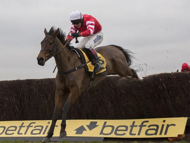 Coneygree is back in action in Saturday's Betfair Chase at Haydock