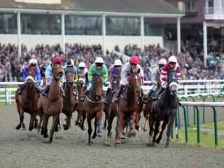 There is all-weather racing from Lingfield on Tuesday