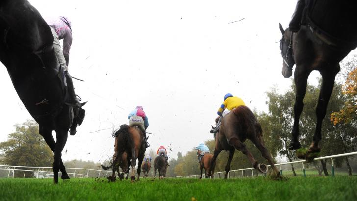Irish racing betting directory bettingexpert hot tips salon
