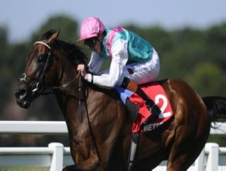 Kingman can win the Irish 2000 Guineas at the Curragh