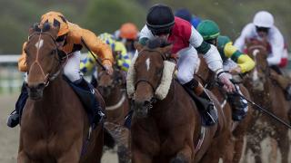 There is all-weather racing from Lingfield on Saturday