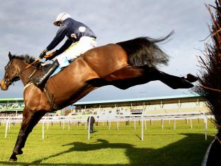 There is jumps racing from Newcastle on Monday