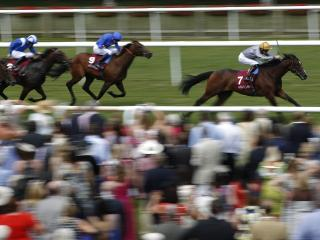 There is racing from Newmarket on Saturday