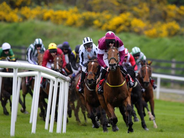 There is racing from two courses in Ireland on Friday evening