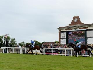 There is Flat racing from Ripon on Saturday