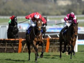 Rule The World chased home The New One at Cheltenham last year