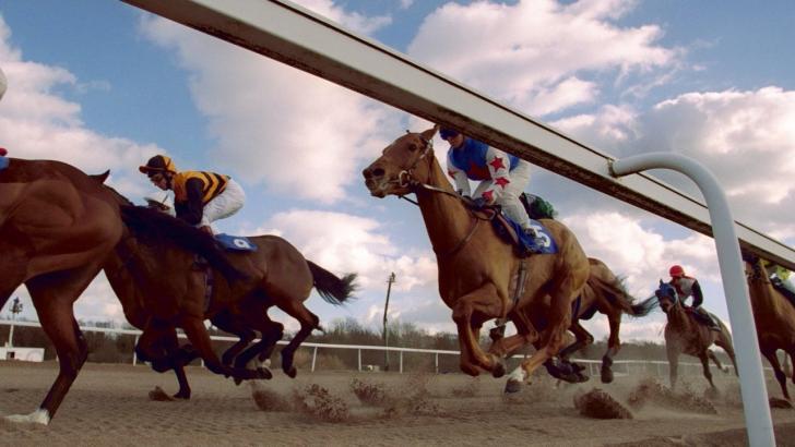 Horse Racing Tips (Today's Horse Racing Tips) » Betfair™ Blog
