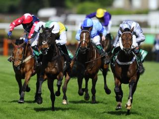 The bet365 Gold Cup is the feature race from Sandown on Saturday