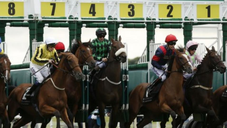 Timeform pick out three bets in South Africa on Sunday