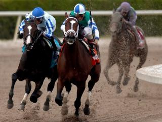 Timeform provide three US bets on Saturday
