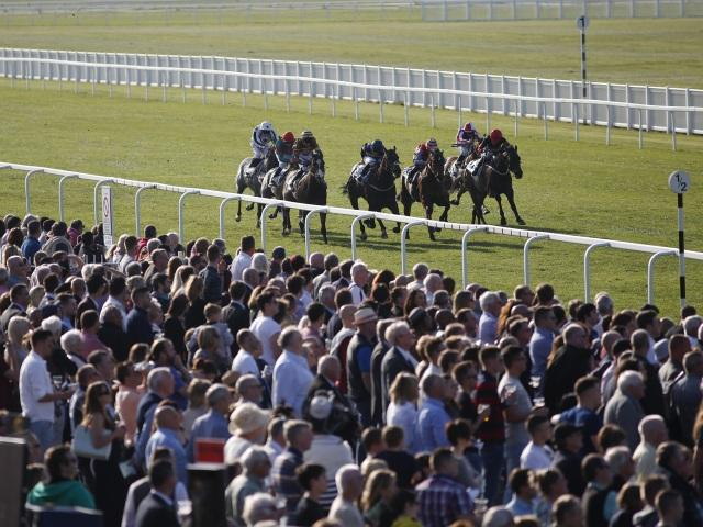 There is Flat racing at Windsor on Monday