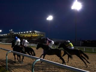 There is racing from Wolverhampton on Monday