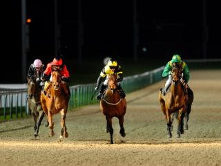 There is racing at Wolverhampton on Tuesday
