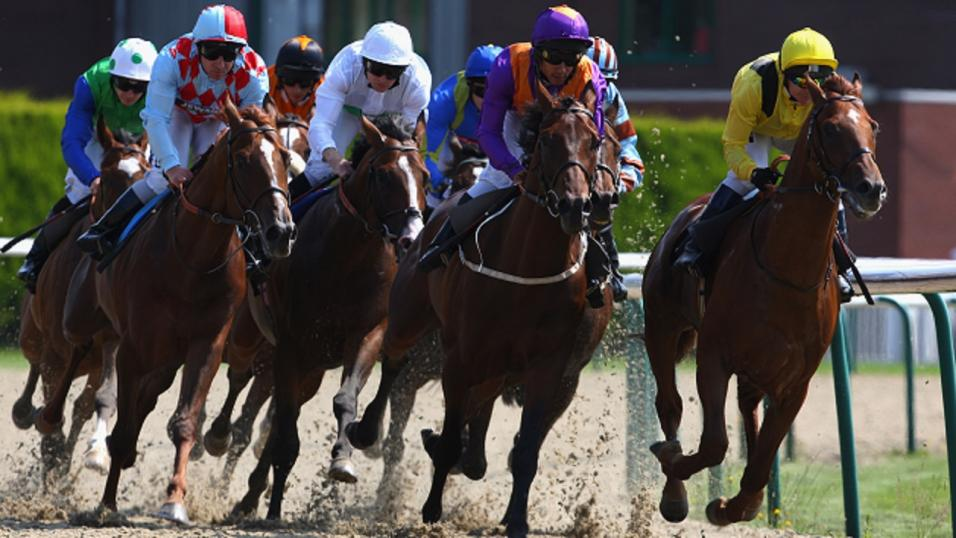betting betfair timeform racing