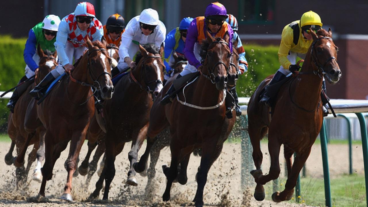 tutorial on horse race betting strategies