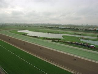 There is racing at Woodbine on Wednesday