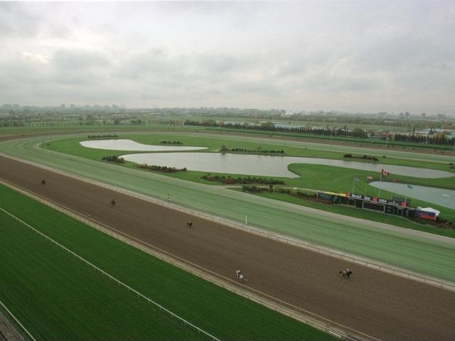 There's good racing at Woodbine on Sunday