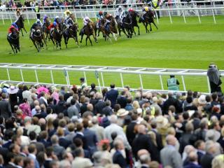 Tony's best bet for Saturday comes from York