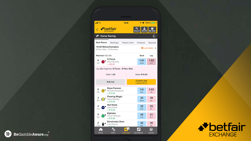 Lay betting explained betfair login to get max pay how much to bet on 8 or 6 in craps