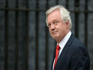 If Theresa May resigns soon, David Davis is in pole position