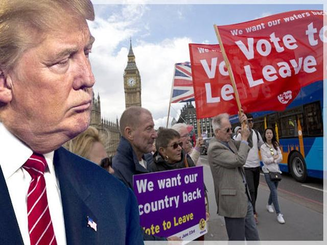 A vote for Brexit doesn't mean Trump wins, says Paul