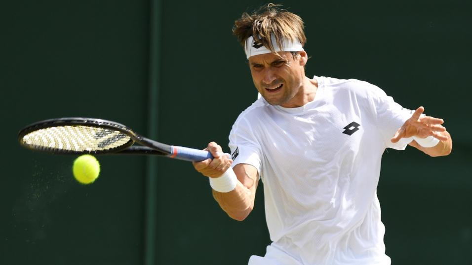 Spanish Tennis player David Ferrer